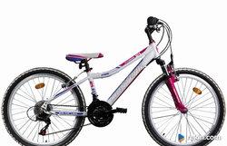 """Rower Monteria Fitnes 24"""""""