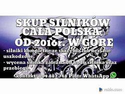 SKUP SILNIKÓW CAŁA POLSKA OD 2016 ROKU MIX
